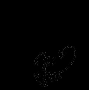 Logo Plettro Custom